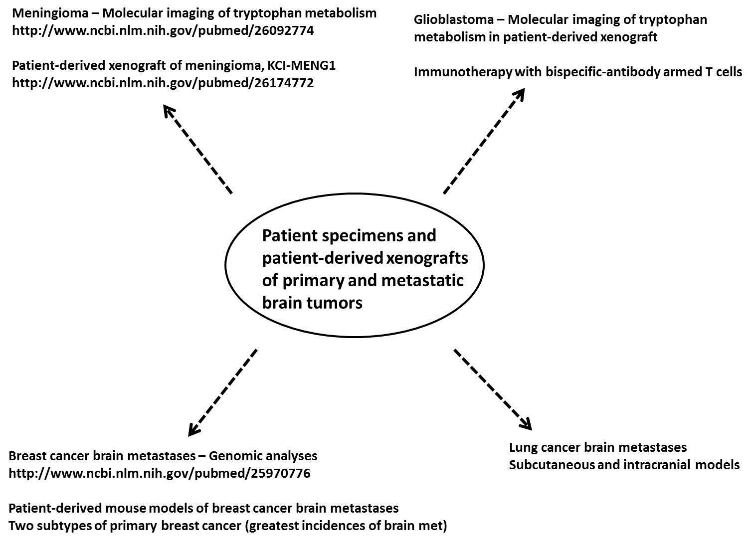 Neuro-Oncology Research: Sandeep Mittal, MD, FRCSC, FACS